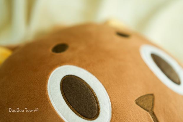 pillow02_p07s